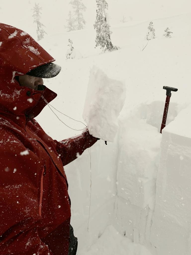 "weak top <a href=""https://www.sierraavalanchecenter.org/avalanche-terms/snow-layer"" title=""A snowpack stratum differentiated from others by weather, metamorphism, or other processes."" class=""lexicon-term"">layer</a> roughly 35cm"