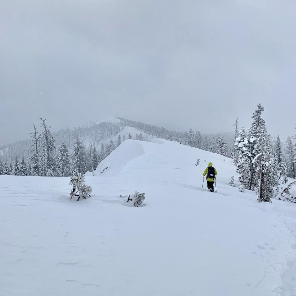 "<a href=""https://www.sierraavalanchecenter.org/avalanche-terms/wind-loading"" title=""The added weight of wind drifted snow."" class=""lexicon-term"">Wind loading</a> - small <a href=""https://www.sierraavalanchecenter.org/avalanche-terms/cornice"" title=""A mass of snow deposited by the wind, often overhanging, and usually near a sharp terrain break such as a ridge. Cornices can break off unexpectedly and should be approached with caution."" class=""lexicon-term"">cornice</a>"