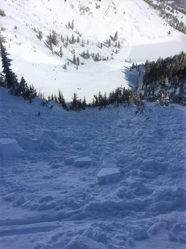 "<a href=""https://www.sierraavalanchecenter.org/avalanche-terms/avalanche"" title=""A mass of snow sliding, tumbling, or flowing down an inclined surface."" class=""lexicon-term"">Avalanche</a> debris field. The path dog legs out of sight to the left."