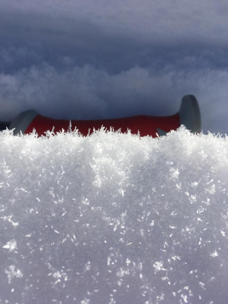 "<a href=""https://www.sierraavalanchecenter.org/avalanche-terms/surface-hoar"" title=""Featherly crystals that form on the snow surface during clear and calm conditions - essentially frozen dew. Forms a persistent weak layer once buried."" class=""lexicon-term"">Surface Hoar</a> growing on flat terrain near base of Red Lake Peak."