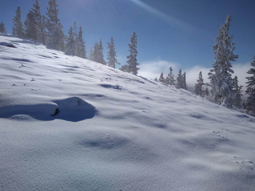 "Sunny skies above the inversion <a href=""https://www.sierraavalanchecenter.org/avalanche-terms/snow-layer"" title=""A snowpack stratum differentiated from others by weather, metamorphism, or other processes."" class=""lexicon-term"">layer</a>. <a href=""https://www.sierraavalanchecenter.org/avalanche-terms/rime"" title=""Supercooled water droplets that freeze to objects in exposed terrain, forming icy deposits on the windward side. Rime can also form on snowflakes as they fall through the sky, giving them a fuzzy appearence."" class=""lexicon-term"">Rimed</a> surface snow and plenty of snow available on W <a href=""https://www.sierraavalanchecenter.org/avalanche-terms/aspect"" title=""The compass direction a slope faces (i.e. North, South, East, or West.)"" class=""lexicon-term"">aspects</a> for future wind transport."