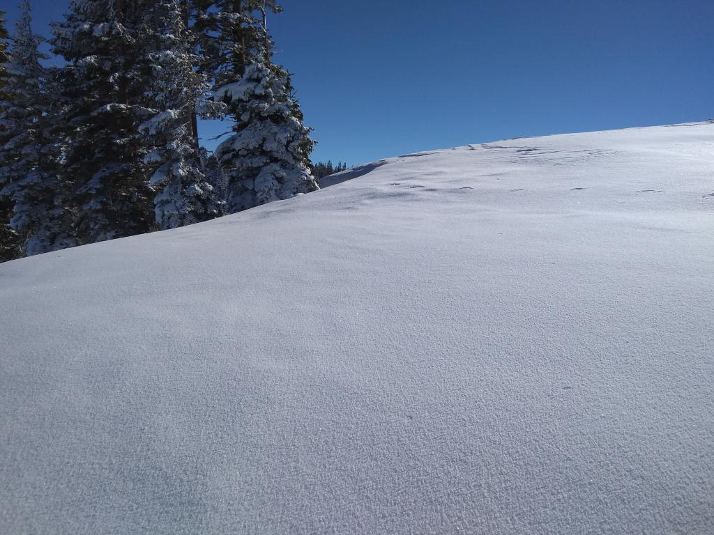 "<a href=""https://www.sierraavalanchecenter.org/avalanche-terms/rime"" title=""Supercooled water droplets that freeze to objects in exposed terrain, forming icy deposits on the windward side. Rime can also form on snowflakes as they fall through the sky, giving them a fuzzy appearence."" class=""lexicon-term"">Rimed</a> surface snow."