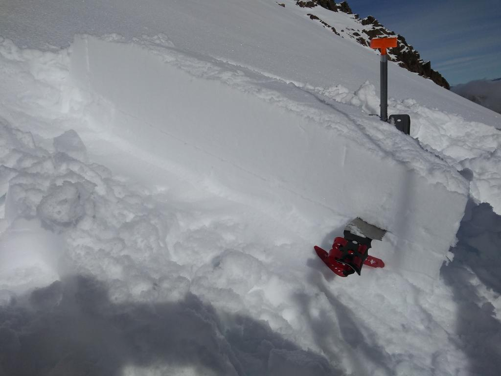 "SE <a href=""https://www.sierraavalanchecenter.org/avalanche-terms/aspect"" title=""The compass direction a slope faces (i.e. North, South, East, or West.)"" class=""lexicon-term"">aspect</a> below Grouse Rock. 10cm artificial <a href=""https://www.sierraavalanchecenter.org/avalanche-terms/slab"" title=""A relatively cohesive snowpack layer."" class=""lexicon-term"">slab</a> created PST 20/100 end on 12/4 SH <a href=""https://www.sierraavalanchecenter.org/avalanche-terms/snow-layer"" title=""A snowpack stratum differentiated from others by weather, metamorphism, or other processes."" class=""lexicon-term"">layer</a>."