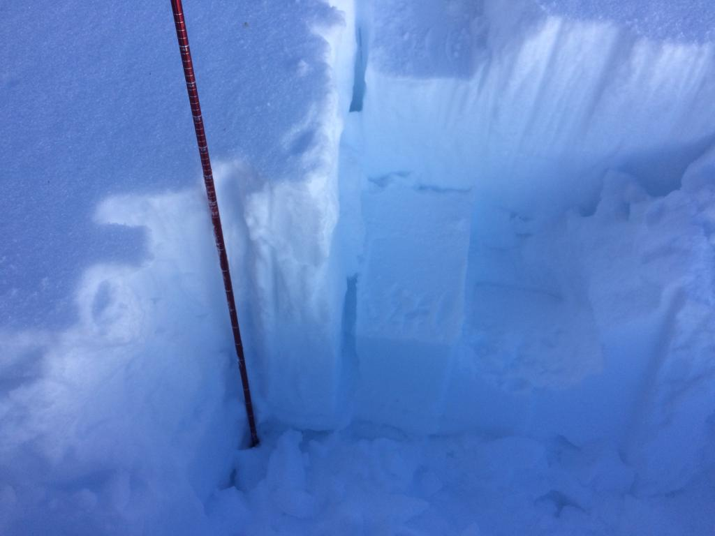 Extended column test with no failure, Snow pack was 125cm