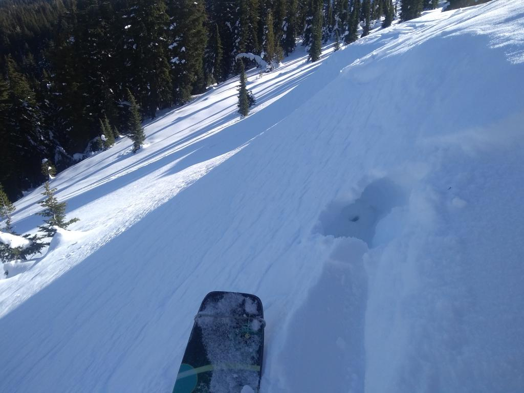 """Small <a href=""""/avalanche-terms/wind-slab"""" title=""""A cohesive layer of snow formed when wind deposits snow onto leeward terrain. Wind slabs are often smooth and rounded and sometimes sound hollow."""" class=""""lexicon-term"""">wind slab</a> at treeline on NE <a href=""""/avalanche-terms/aspect"""" title=""""The compass direction a slope faces (i.e. North, South, East, or West.)"""" class=""""lexicon-term"""">aspect</a>."""