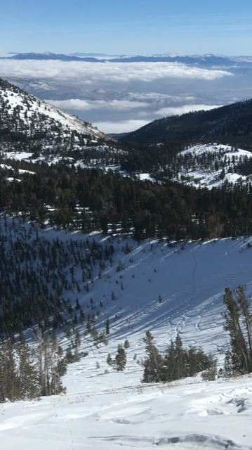 """Thin snow cover (40cm) w vegetation showing and sun affected on SE <a href=""""https://www.sierraavalanchecenter.org/avalanche-terms/aspect"""" title=""""The compass direction a slope faces (i.e. North, South, East, or West.)"""" class=""""lexicon-term"""">aspect</a>"""