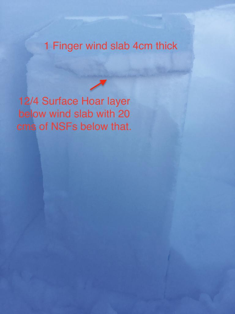 """In more open areas some <a href=""""/avalanche-terms/wind-slab"""" title=""""A cohesive layer of snow formed when wind deposits snow onto leeward terrain. Wind slabs are often smooth and rounded and sometimes sound hollow."""" class=""""lexicon-term"""">wind slab</a> was present. This was sitting on top of 20cms of very soft snow."""