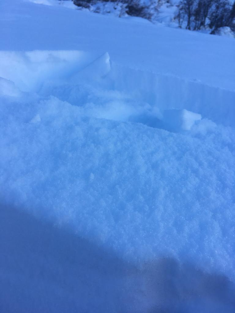 """The <a href=""""/avalanche-terms/wind-slab"""" title=""""A cohesive layer of snow formed when wind deposits snow onto leeward terrain. Wind slabs are often smooth and rounded and sometimes sound hollow."""" class=""""lexicon-term"""">wind slab</a> was very easy to remove and expose the soft SH and NSFs below."""