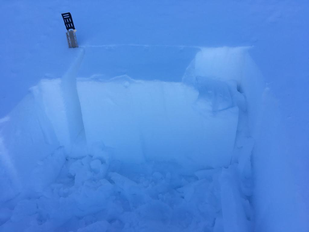 """Despite a small <a href=""""/avalanche-terms/wind-slab"""" title=""""A cohesive layer of snow formed when wind deposits snow onto leeward terrain. Wind slabs are often smooth and rounded and sometimes sound hollow."""" class=""""lexicon-term"""">wind slab</a>, ECTs did not produce <a href=""""/avalanche-terms/propagation"""" title=""""The spreading of a fracture or crack within the snowpack."""" class=""""lexicon-term"""">propagation</a>. Ski cuts on small test features also did not produce results in this area."""