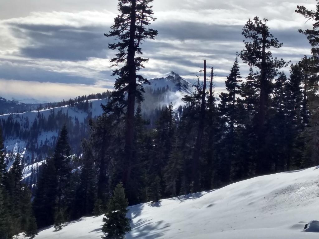 NE side of Silver Peak as viewed from ridge between Pole Creek and Deep Creek.