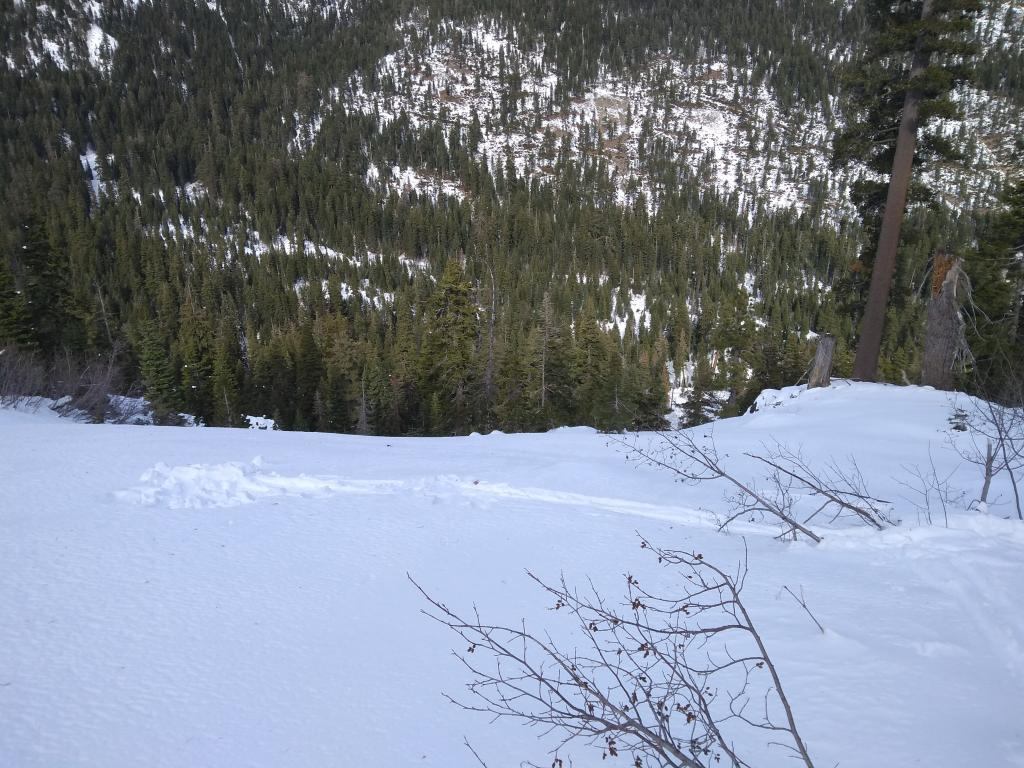 "<a href=""https://www.sierraavalanchecenter.org/avalanche-terms/snowpit"" title=""A pit dug vertically into the snowpack where snow layering is observed and stability tests may be performed. Also called a snow profile."" class=""lexicon-term"">Pit</a> location above <a href=""https://www.sierraavalanchecenter.org/avalanche-terms/avalanche-path"" title=""A terrain feature where an avalanche occurs. Composed of a Starting Zone, Track, and Runout Zone."" class=""lexicon-term"">avalanche path</a> below. Trim line and <a href=""https://www.sierraavalanchecenter.org/avalanche-terms/runout-zone"" title=""The portion of an avalanche path where the debris typically comes to rest."" class=""lexicon-term"">runout zone</a> just visible in background."