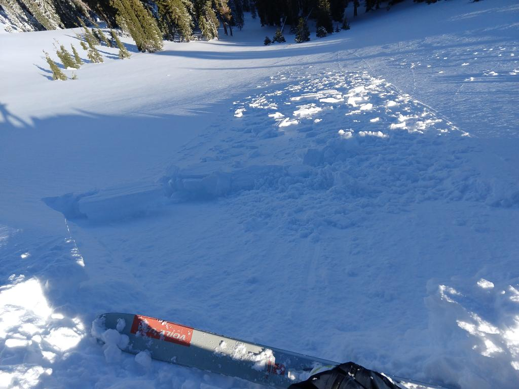 """Small ski kick <a href=""""/avalanche-terms/trigger"""" title=""""A disturbance that initiates fracture within the weak layer causing an avalanche. In 90 percent of avalanche accidents, the victim or someone in the victims party triggers the avalanche."""" class=""""lexicon-term"""">triggered</a> <a href=""""/avalanche-terms/wind-slab"""" title=""""A cohesive layer of snow formed when wind deposits snow onto leeward terrain. Wind slabs are often smooth and rounded and sometimes sound hollow."""" class=""""lexicon-term"""">wind slab</a> on the edge of a <a href=""""/avalanche-terms/wind-loading"""" title=""""The added weight of wind drifted snow."""" class=""""lexicon-term"""">wind loaded</a> slope in near treeline terrain."""