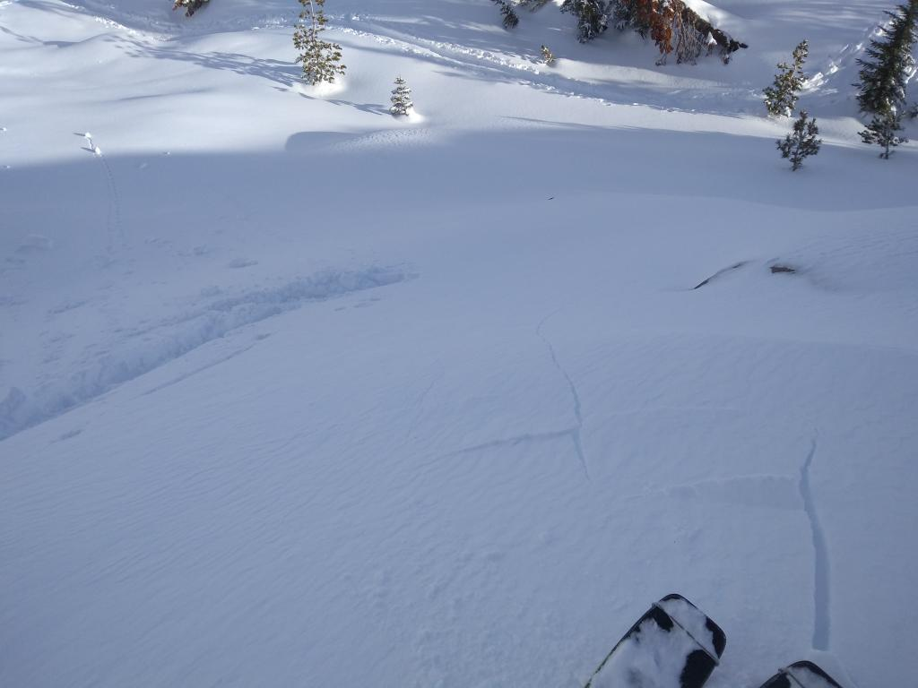 """Shooting cracks in <a href=""""https://www.sierraavalanchecenter.org/avalanche-terms/wind-loading"""" title=""""The added weight of wind drifted snow."""" class=""""lexicon-term"""">wind loaded</a> terrain on small test slopes at lower elevation."""