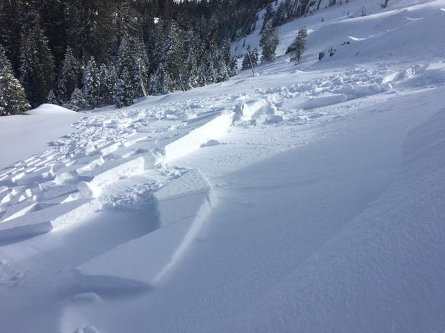"These <a href=""/avalanche-terms/wind-slab"" title=""A cohesive layer of snow formed when wind deposits snow onto leeward terrain. Wind slabs are often smooth and rounded and sometimes sound hollow."" class=""lexicon-term"">wind slab</a> <a href=""/avalanche-terms/avalanche"" title=""A mass of snow sliding, tumbling, or flowing down an inclined surface."" class=""lexicon-term"">avalanches</a> along Mt. Judah were thought to have occurred mid morning."