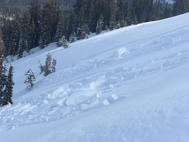 """<a href=""""https://www.sierraavalanchecenter.org/avalanche-terms/wind-slab"""" title=""""A cohesive layer of snow formed when wind deposits snow onto leeward terrain. Wind slabs are often smooth and rounded and sometimes sound hollow."""" class=""""lexicon-term"""">Wind slab</a> <a href=""""https://www.sierraavalanchecenter.org/avalanche-terms/avalanche"""" title=""""A mass of snow sliding, tumbling, or flowing down an inclined surface."""" class=""""lexicon-term"""">avalanches</a> along Mt. Judah were up to 1-2' deep, but did not extend very far downslope."""