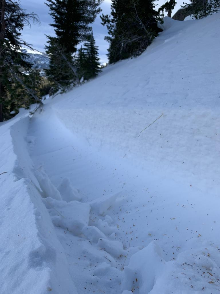 """50yds from where <a href=""""/avalanche-terms/avalanche"""" title=""""A mass of snow sliding, tumbling, or flowing down an inclined surface."""" class=""""lexicon-term"""">avalanche</a> was <a href=""""/avalanche-terms/trigger"""" title=""""A disturbance that initiates fracture within the weak layer causing an avalanche. In 90 percent of avalanche accidents, the victim or someone in the victims party triggers the avalanche."""" class=""""lexicon-term"""">triggered</a>"""