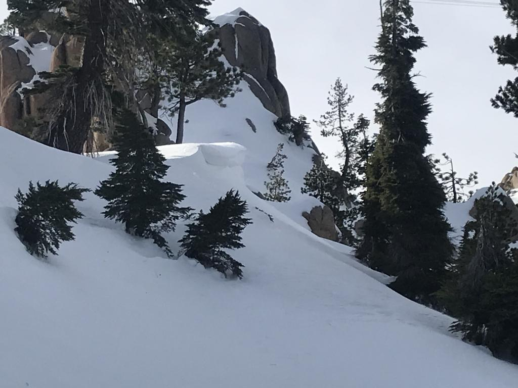 """New <a href=""""https://www.sierraavalanchecenter.org/avalanche-terms/cornice"""" title=""""A mass of snow deposited by the wind, often overhanging, and usually near a sharp terrain break such as a ridge. Cornices can break off unexpectedly and should be approached with caution."""" class=""""lexicon-term"""">Cornice</a> In Shirley Canyon"""