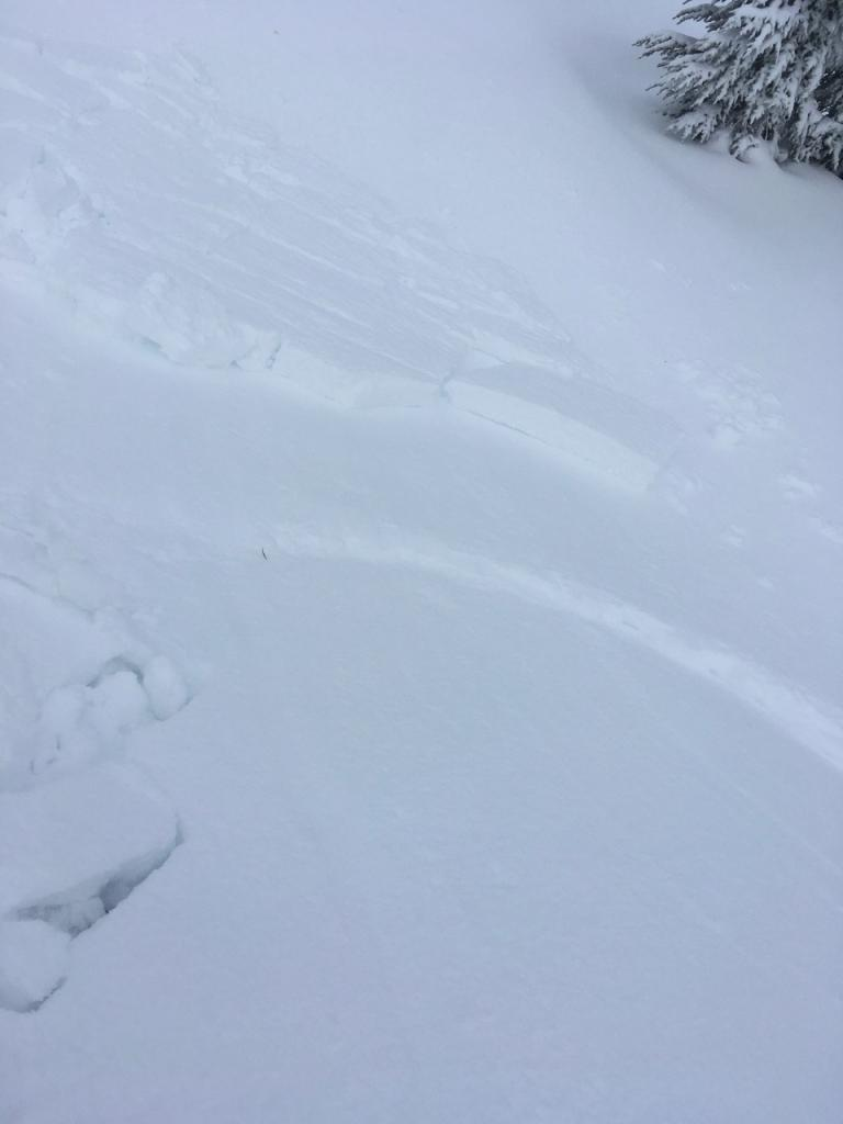 """Looking down this small test slope at the <a href=""""/avalanche-terms/bed-surface"""" title=""""The surface over which a fracture and subsequent avalanche release occurs. Can be either the ground or a snow surface."""" class=""""lexicon-term"""">bed surface</a>, stauch wall, and debris."""
