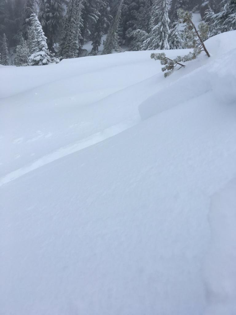 "Looking across <a href=""https://www.sierraavalanchecenter.org/avalanche-terms/bed-surface"" title=""The surface over which a fracture and subsequent avalanche release occurs. Can be either the ground or a snow surface."" class=""lexicon-term"">bed surface</a> at <a href=""https://www.sierraavalanchecenter.org/avalanche-terms/crown-face"" title=""The top fracture surface of a slab avalanche. Usually smooth, clean cut, and angled 90 degrees to the bed surface."" class=""lexicon-term"">crown</a> and flanks."