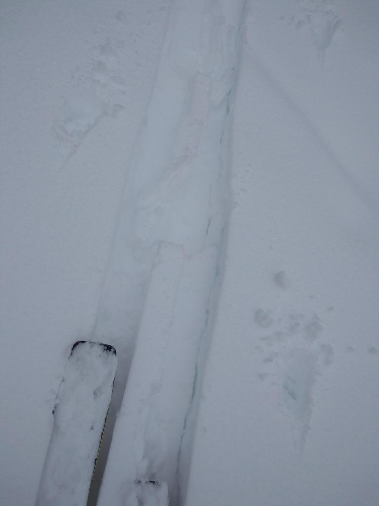 Minor cracking on old/new snow interface while breaking trail.