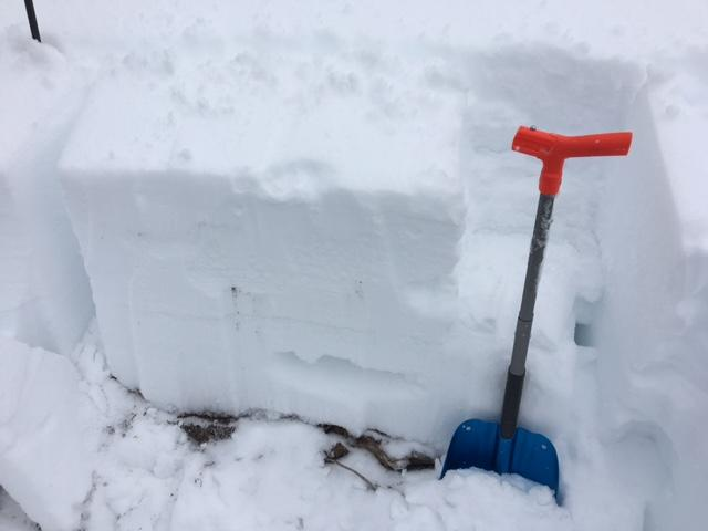 "ECTN at <a href=""https://www.sierraavalanchecenter.org/avalanche-terms/snowpit"" title=""A pit dug vertically into the snowpack where snow layering is observed and stability tests may be performed. Also called a snow profile."" class=""lexicon-term"">pit</a> location.  Lower snowpack mostly <a href=""https://www.sierraavalanchecenter.org/avalanche-terms/faceted-snow"" title=""Angular snow with poor bonding created from large temperature gradients within the snowpack."" class=""lexicon-term"">faceted</a> and weak."