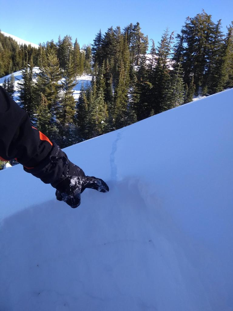 """Old <a href=""""https://www.sierraavalanchecenter.org/avalanche-terms/fracture"""" title=""""The physical separation of the slab from the bed surface and surrounding snow during the initiation of a slab avalanche."""" class=""""lexicon-term"""">fracture</a> failing down to the 12/22 <a href=""""https://www.sierraavalanchecenter.org/avalanche-terms/rain-crust"""" title=""""A clear layer of ice formed when rain falls on the snow surface then freezes."""" class=""""lexicon-term"""">rain crust</a>. <a href=""""https://www.sierraavalanchecenter.org/avalanche-terms/faceted-snow"""" title=""""Angular snow with poor bonding created from large temperature gradients within the snowpack."""" class=""""lexicon-term"""">Faceted snow</a> at this <a href=""""https://www.sierraavalanchecenter.org/avalanche-terms/snow-layer"""" title=""""A snowpack stratum differentiated from others by weather, metamorphism, or other processes."""" class=""""lexicon-term"""">layer</a> interface still shows problematic failure in <a href=""""https://www.sierraavalanchecenter.org/avalanche-terms/snowpit"""" title=""""A pit dug vertically into the snowpack where snow layering is observed and stability tests may be performed. Also called a snow profile."""" class=""""lexicon-term"""">snowpit</a> tests."""