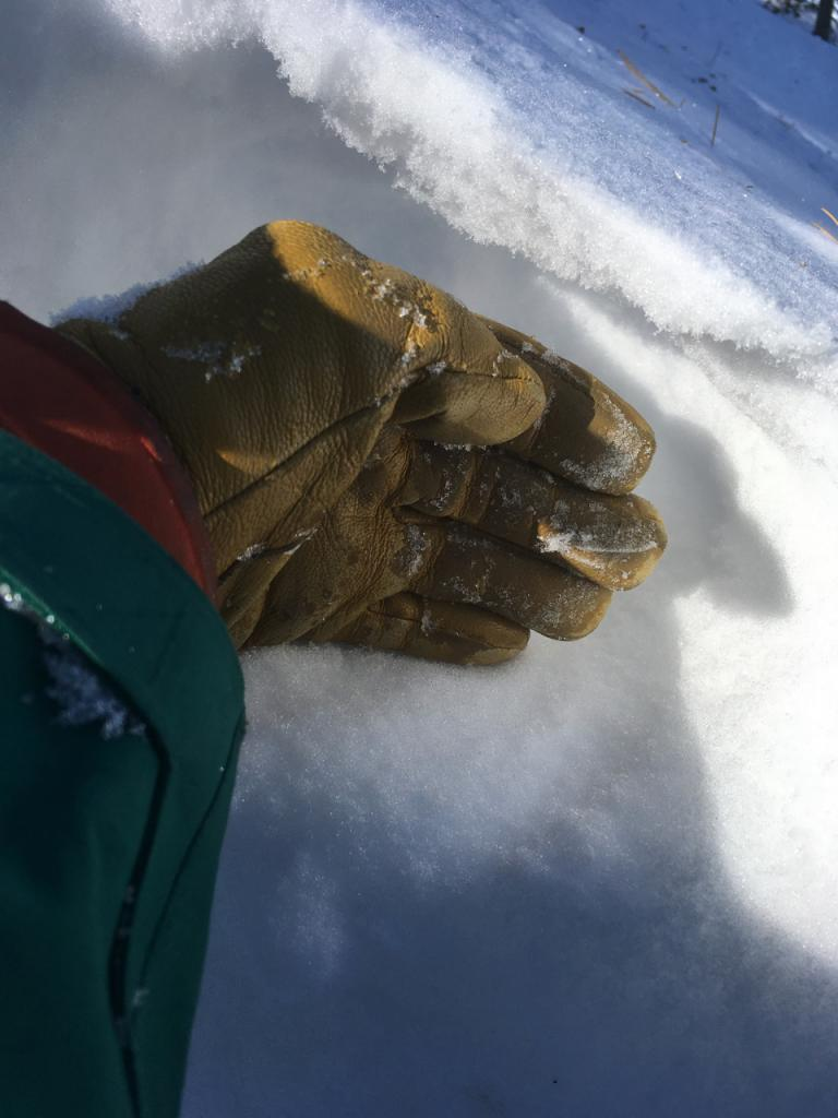 """A thin <a href=""""/avalanche-terms/wind-slab"""" title=""""A cohesive layer of snow formed when wind deposits snow onto leeward terrain. Wind slabs are often smooth and rounded and sometimes sound hollow."""" class=""""lexicon-term"""">wind slab</a> over roughly 15cms of very weak NSFs"""