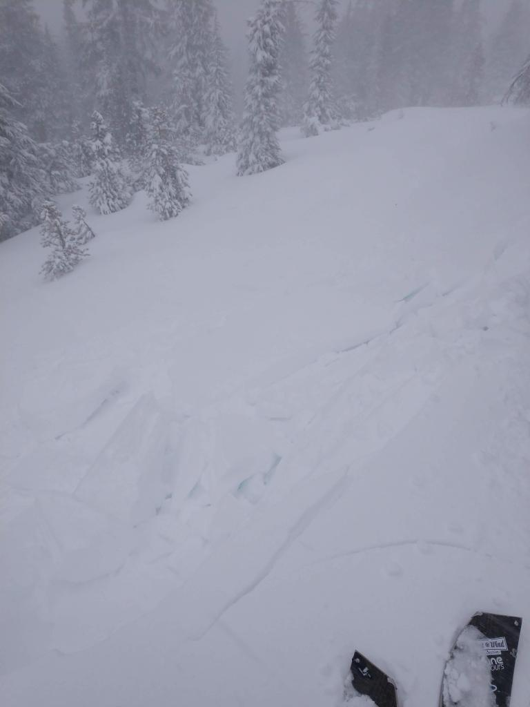 """One of many easily <a href=""""https://www.sierraavalanchecenter.org/avalanche-terms/trigger"""" title=""""A disturbance that initiates fracture within the weak layer causing an avalanche. In 90 percent of avalanche accidents, the victim or someone in the victims party triggers the avalanche."""" class=""""lexicon-term"""">triggered</a> windslabs today"""