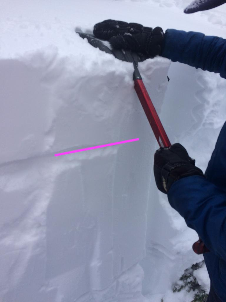"ECTN12 20cm down at the bottom of the dense storm <a href=""/avalanche-terms/slab"" title=""A relatively cohesive snowpack layer."" class=""lexicon-term"">slab</a>. N <a href=""/avalanche-terms/aspect"" title=""The compass direction a slope faces (i.e. North, South, East, or West.)"" class=""lexicon-term"">aspect</a> at 9,100 feet."