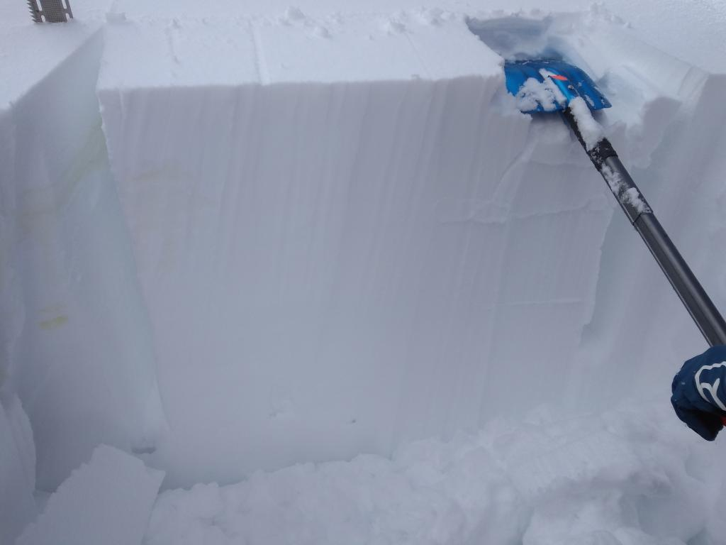 Multi-height ECTN results within the recent storm snow.