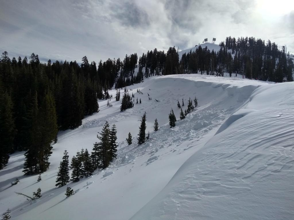 "Multiple natural <a href=""https://www.sierraavalanchecenter.org/avalanche-terms/wind-slab"" title=""A cohesive layer of snow formed when wind deposits snow onto leeward terrain. Wind slabs are often smooth and rounded and sometimes sound hollow."" class=""lexicon-term"">wind slab</a> <a href=""https://www.sierraavalanchecenter.org/avalanche-terms/avalanche"" title=""A mass of snow sliding, tumbling, or flowing down an inclined surface."" class=""lexicon-term"">avalanches</a> on Wildflower Ridge, 7800&#039;, NE <a href=""https://www.sierraavalanchecenter.org/avalanche-terms/aspect"" title=""The compass direction a slope faces (i.e. North, South, East, or West.)"" class=""lexicon-term"">aspect</a>."