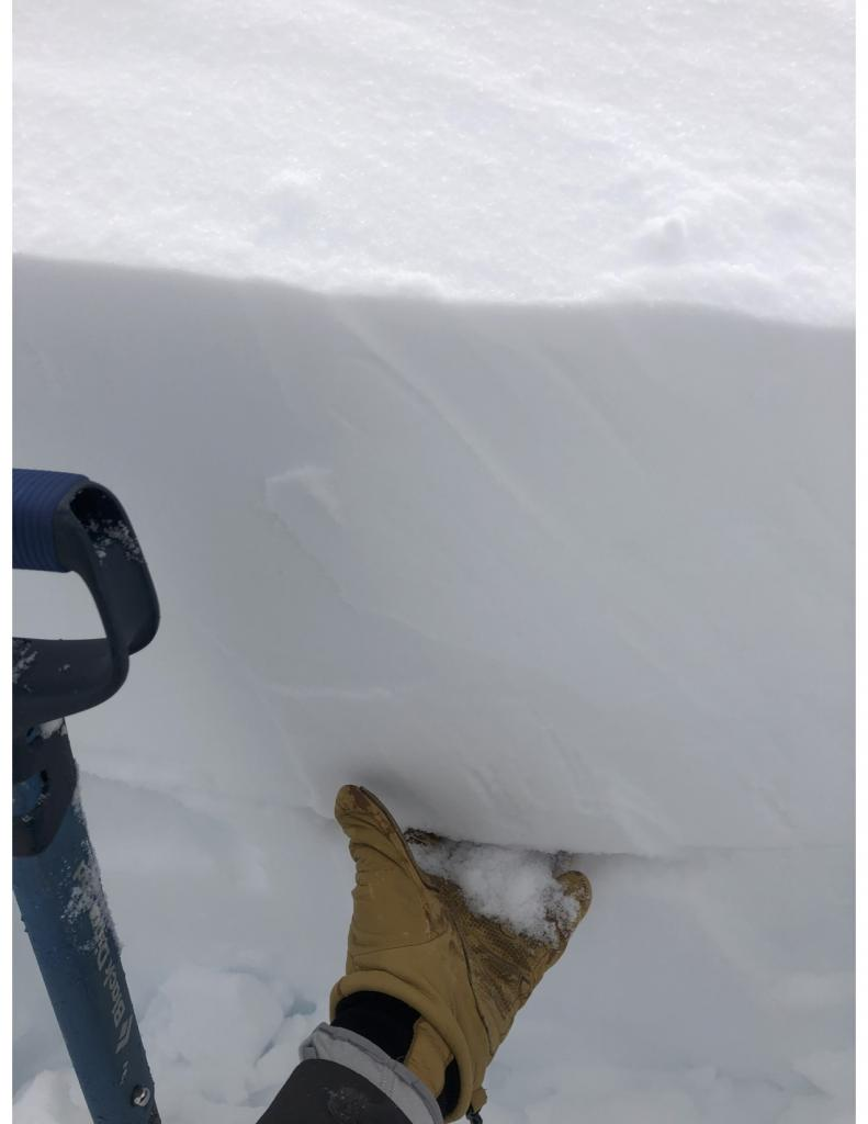 "<a href=""https://www.sierraavalanchecenter.org/avalanche-terms/weak-layer"" title=""A snowpack layer with less strength than adjacent layers. Often the layer in the snowpack where an avalanche fractures."" class=""lexicon-term"">Weak layer</a> underneath a windslab"