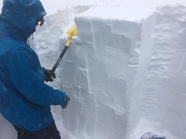 """ECTN's in recent storm snow with no results on old <a href=""""https://www.sierraavalanchecenter.org/avalanche-terms/faceted-snow"""" title=""""Angular snow with poor bonding created from large temperature gradients within the snowpack."""" class=""""lexicon-term"""">faceted</a> <a href=""""https://www.sierraavalanchecenter.org/avalanche-terms/snow-layer"""" title=""""A snowpack stratum differentiated from others by weather, metamorphism, or other processes."""" class=""""lexicon-term"""">layer</a>."""