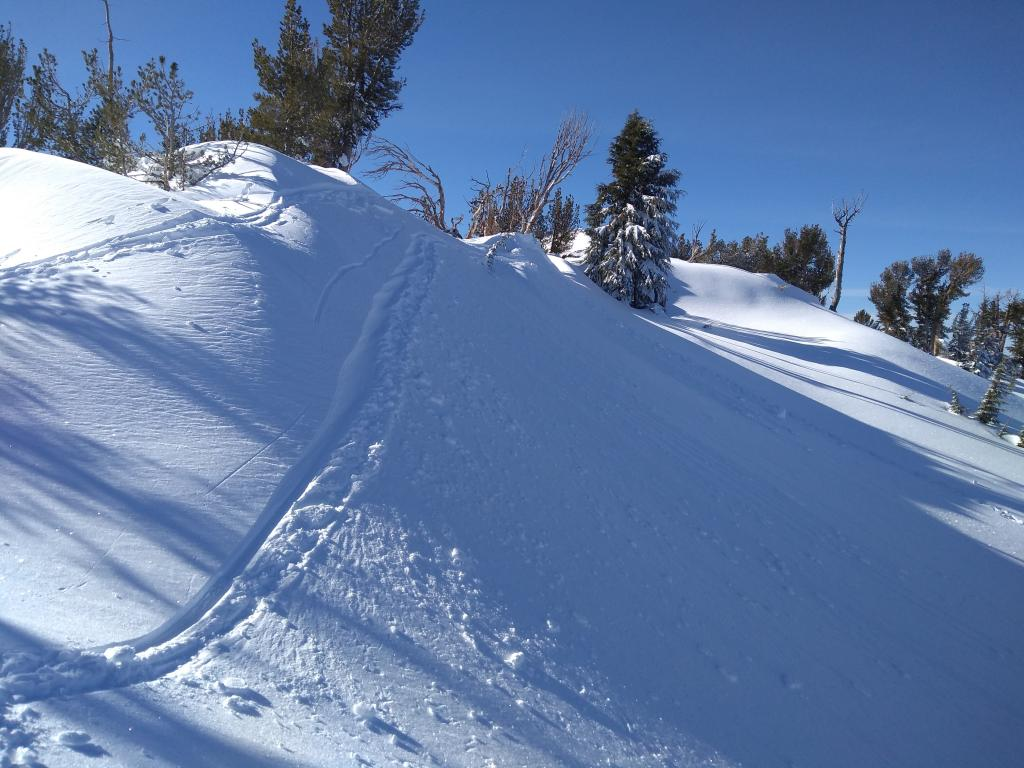 "Jumping on several summit ridge <a href=""https://www.sierraavalanchecenter.org/avalanche-terms/wind-loading"" title=""The added weight of wind drifted snow."" class=""lexicon-term"">wind loaded</a> test slopes produced little to no failure of <a href=""https://www.sierraavalanchecenter.org/avalanche-terms/wind-slab"" title=""A cohesive layer of snow formed when wind deposits snow onto leeward terrain. Wind slabs are often smooth and rounded and sometimes sound hollow."" class=""lexicon-term"">wind slabs</a>."