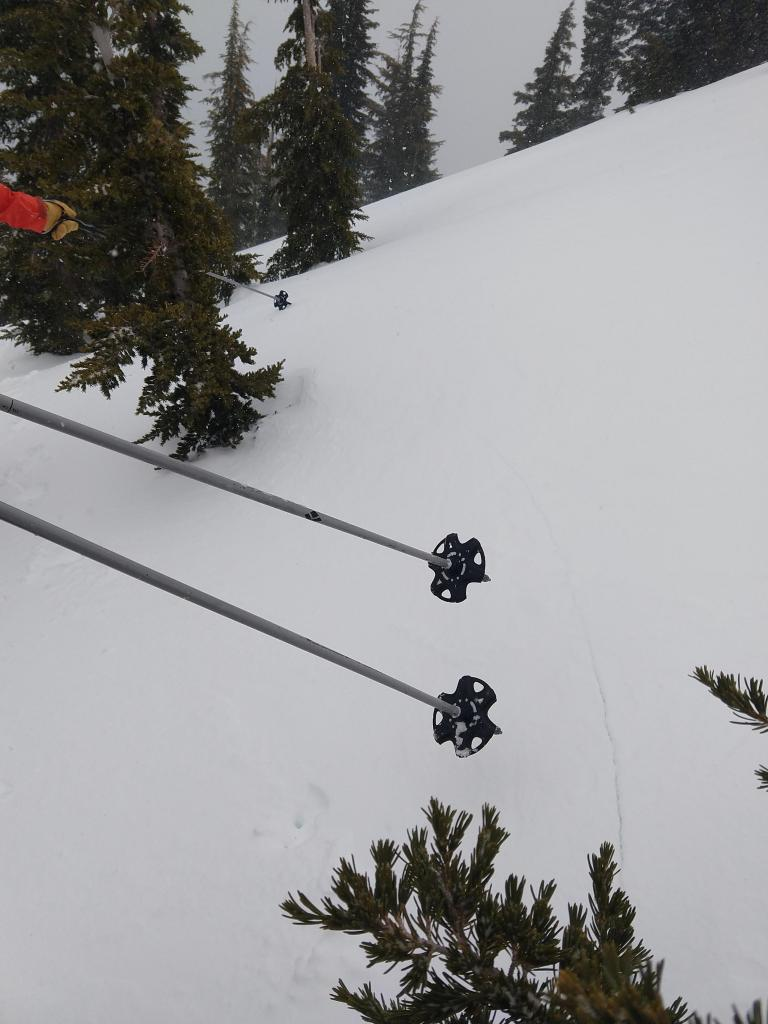 "Shooting crack <a href=""https://www.sierraavalanchecenter.org/avalanche-terms/trigger"" title=""A disturbance that initiates fracture within the weak layer causing an avalanche. In 90 percent of avalanche accidents, the victim or someone in the victims party triggers the avalanche."" class=""lexicon-term"">triggered</a> while breaking trail. Connects ski pole to ski pole and beyond for a total of ~20'."