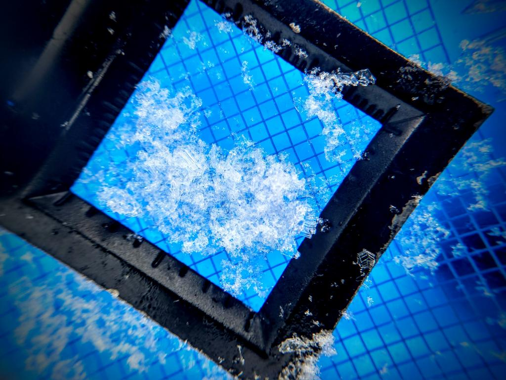 """Can you Spot the <a href=""""/avalanche-terms/surface-hoar"""" title=""""Featherly crystals that form on the snow surface during clear and calm conditions - essentially frozen dew. Forms a persistent weak layer once buried."""" class=""""lexicon-term"""">Surface Hoar</a>? Obvious <a href=""""/avalanche-terms/snow-layer"""" title=""""A snowpack stratum differentiated from others by weather, metamorphism, or other processes."""" class=""""lexicon-term"""">layer</a> found about 65cm Down"""