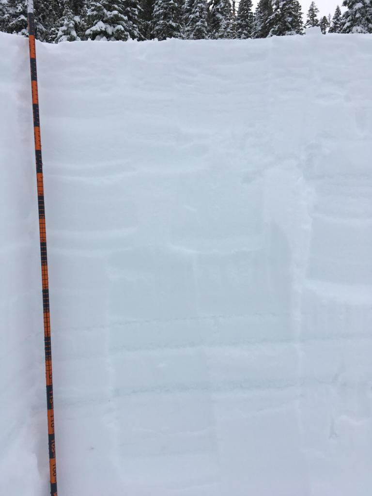 "<a href=""https://www.sierraavalanchecenter.org/avalanche-terms/surface-hoar"" title=""Featherly crystals that form on the snow surface during clear and calm conditions - essentially frozen dew. Forms a persistent weak layer once buried."" class=""lexicon-term"">Surface hoar</a> buried under 65cm of new snow"