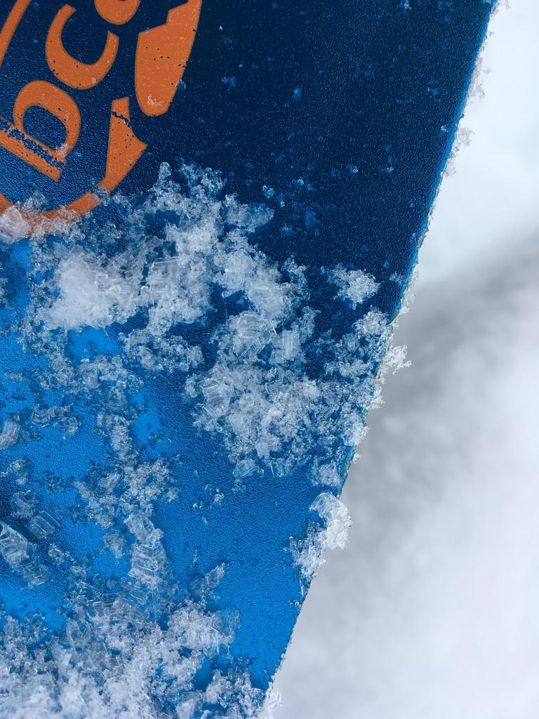 "<a href=""https://www.sierraavalanchecenter.org/avalanche-terms/surface-hoar"" title=""Featherly crystals that form on the snow surface during clear and calm conditions - essentially frozen dew. Forms a persistent weak layer once buried."" class=""lexicon-term"">Surface hoar</a> grains removed from bottom of <a href=""https://www.sierraavalanchecenter.org/avalanche-terms/slab"" title=""A relatively cohesive snowpack layer."" class=""lexicon-term"">slab</a> on ECTP6"