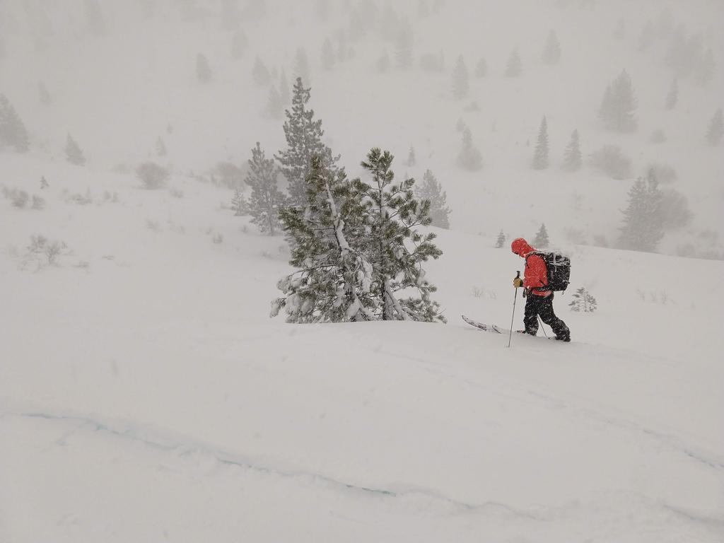 "<a href=""https://www.sierraavalanchecenter.org/avalanche-terms/whumpf"" title=""When the fracture of a lower snow layer causes an upper layer to fall or collapse, making a whumpfing sound. This an obvious sign of instability. See Collapse."" class=""lexicon-term"">Whumpf</a> <a href=""https://www.sierraavalanchecenter.org/avalanche-terms/trigger"" title=""A disturbance that initiates fracture within the weak layer causing an avalanche. In 90 percent of avalanche accidents, the victim or someone in the victims party triggers the avalanche."" class=""lexicon-term"">triggered</a> by skier at that location."