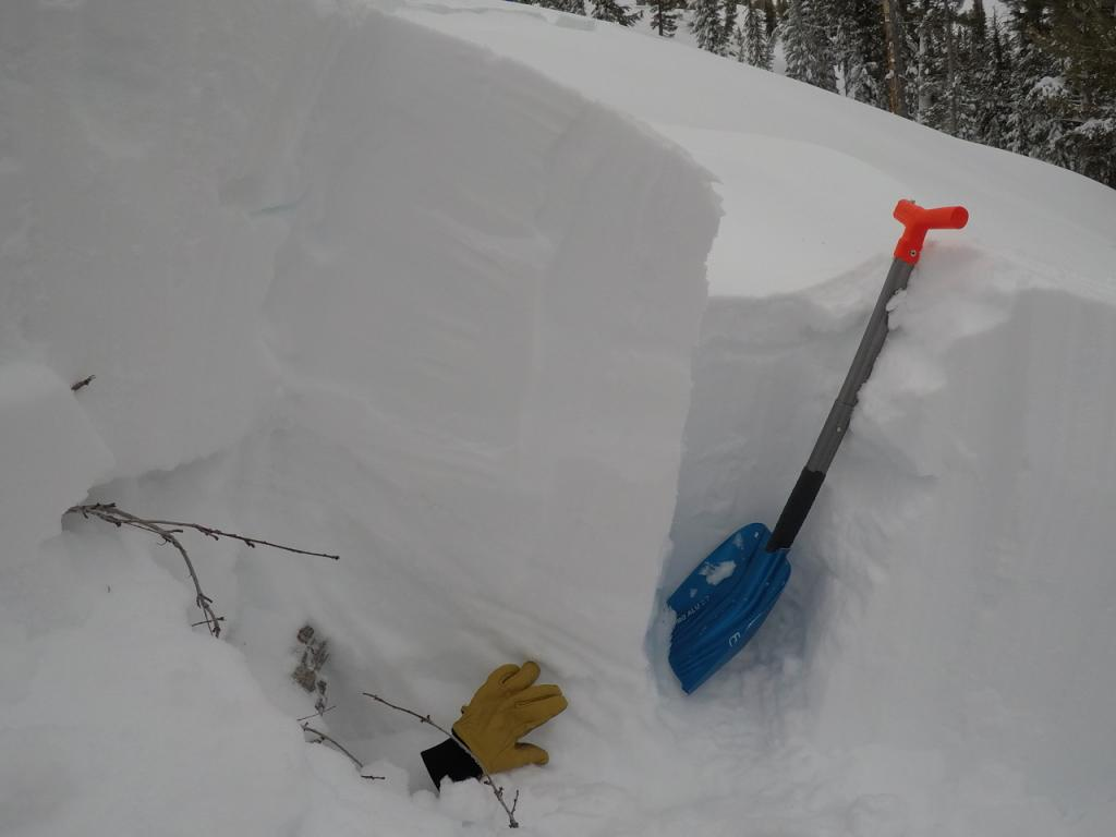 "<a href=""https://www.sierraavalanchecenter.org/avalanche-terms/snowpit"" title=""A pit dug vertically into the snowpack where snow layering is observed and stability tests may be performed. Also called a snow profile."" class=""lexicon-term"">Profile</a> of <a href=""https://www.sierraavalanchecenter.org/avalanche-terms/avalanche"" title=""A mass of snow sliding, tumbling, or flowing down an inclined surface."" class=""lexicon-term"">avalanche</a> <a href=""https://www.sierraavalanchecenter.org/avalanche-terms/crown-face"" title=""The top fracture surface of a slab avalanche. Usually smooth, clean cut, and angled 90 degrees to the bed surface."" class=""lexicon-term"">crown</a>. <a href=""https://www.sierraavalanchecenter.org/avalanche-terms/faceted-snow"" title=""Angular snow with poor bonding created from large temperature gradients within the snowpack."" class=""lexicon-term"">Facets</a> are by fingers of glove. Shovel blade is roughly at <a href=""https://www.sierraavalanchecenter.org/avalanche-terms/bed-surface"" title=""The surface over which a fracture and subsequent avalanche release occurs. Can be either the ground or a snow surface."" class=""lexicon-term"">bed surface</a>."