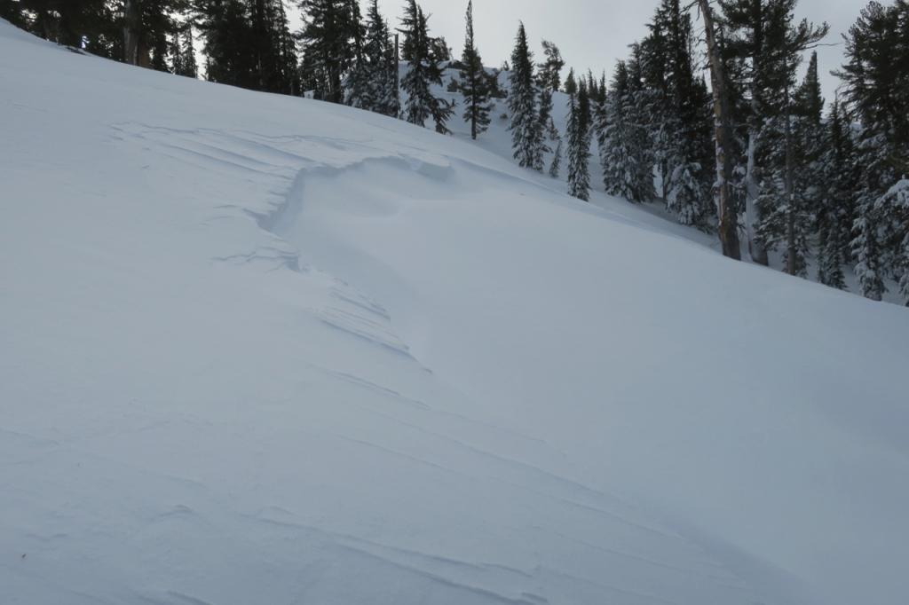 "<a href=""https://www.sierraavalanchecenter.org/avalanche-terms/crown-face"" title=""The top fracture surface of a slab avalanche. Usually smooth, clean cut, and angled 90 degrees to the bed surface."" class=""lexicon-term"">Crown</a> at midpoint of <a href=""https://www.sierraavalanchecenter.org/avalanche-terms/avalanche"" title=""A mass of snow sliding, tumbling, or flowing down an inclined surface."" class=""lexicon-term"">avalanche</a>."