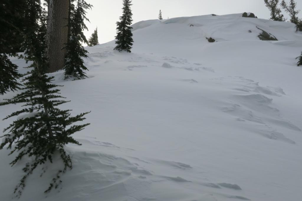 "Looking up towards the <a href=""https://www.sierraavalanchecenter.org/avalanche-terms/starting-zone"" title=""The portion of an avalanche path where an avalanche releases."" class=""lexicon-term"">start zone</a>."