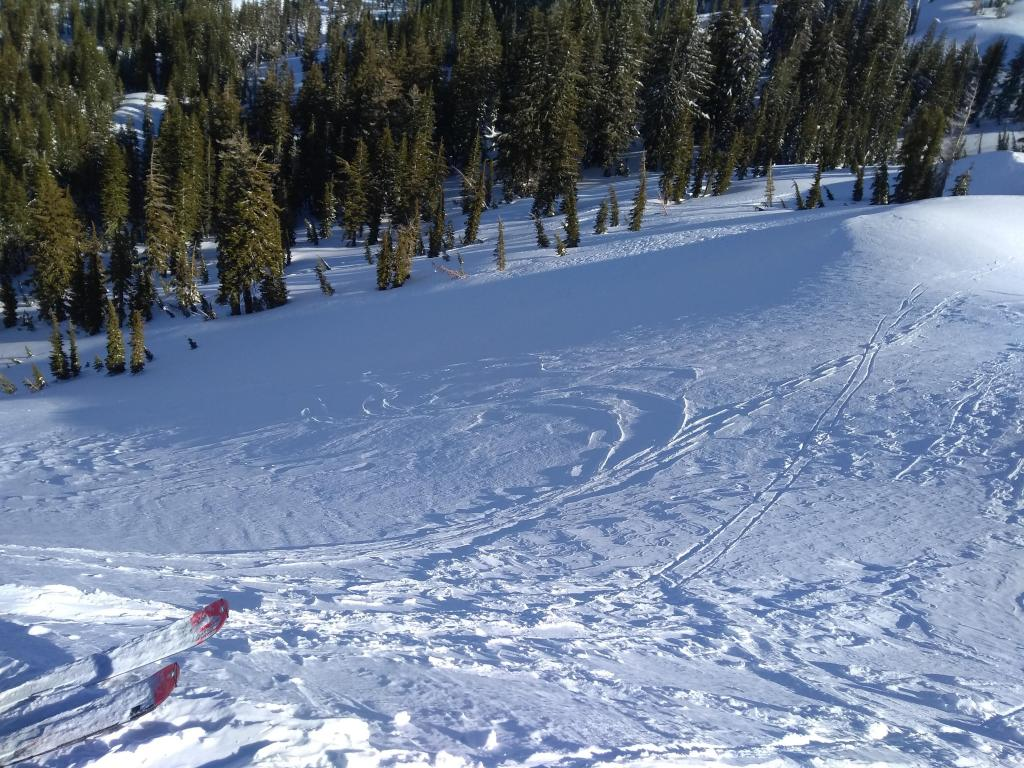 """Wind scoured N <a href=""""https://www.sierraavalanchecenter.org/avalanche-terms/aspect"""" title=""""The compass direction a slope faces (i.e. North, South, East, or West.)"""" class=""""lexicon-term"""">aspect</a> terrain at treeline."""