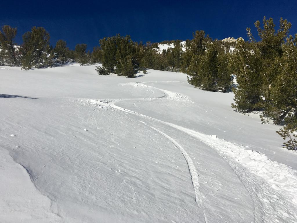 "SE <a href=""https://www.sierraavalanchecenter.org/avalanche-terms/aspect"" title=""The compass direction a slope faces (i.e. North, South, East, or West.)"" class=""lexicon-term"">aspects</a> with dry/wintery snow above 9000 ft at 9:15 am"