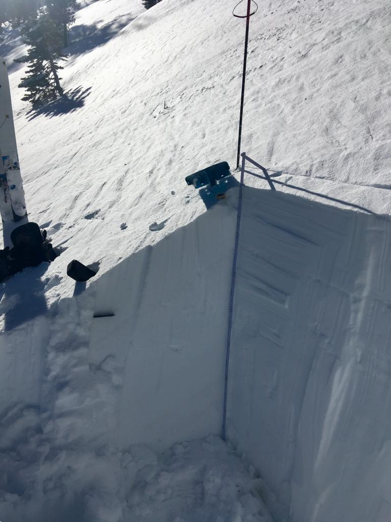 "The observation wall of our <a href=""https://www.sierraavalanchecenter.org/avalanche-terms/snowpit"" title=""A pit dug vertically into the snowpack where snow layering is observed and stability tests may be performed. Also called a snow profile."" class=""lexicon-term"">profile</a>"