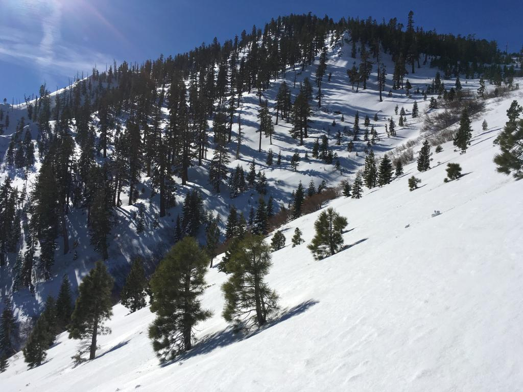 Porcupine Ridge/ST terrain