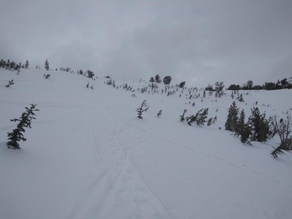 """Small <a href=""""https://www.sierraavalanchecenter.org/avalanche-terms/avalanche"""" title=""""A mass of snow sliding, tumbling, or flowing down an inclined surface."""" class=""""lexicon-term"""">avalanche</a> terrain feature, 30-32 degrees, N <a href=""""https://www.sierraavalanchecenter.org/avalanche-terms/aspect"""" title=""""The compass direction a slope faces (i.e. North, South, East, or West.)"""" class=""""lexicon-term"""">aspect</a>, with <a href=""""https://www.sierraavalanchecenter.org/avalanche-terms/surface-hoar"""" title=""""Featherly crystals that form on the snow surface during clear and calm conditions - essentially frozen dew. Forms a persistent weak layer once buried."""" class=""""lexicon-term"""">surface hoar</a> present."""
