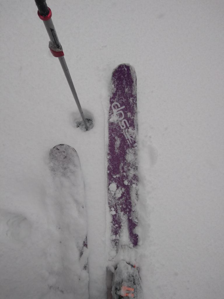 At 7600', around 4'' of wet snow on top of a supportable crust.