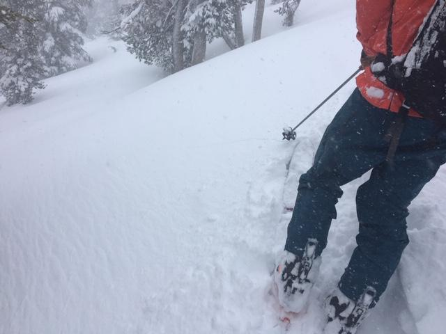 """Shooting cracks off of skis while <a href=""""https://www.sierraavalanchecenter.org/avalanche-terms/skin-track"""" title=""""Backcountry skiers and some snowboarders ascend slopes using climbing skins attached to the bottom of their skis."""" class=""""lexicon-term"""">skinning</a> up, at 9000&#039; on a NE <a href=""""https://www.sierraavalanchecenter.org/avalanche-terms/aspect"""" title=""""The compass direction a slope faces (i.e. North, South, East, or West.)"""" class=""""lexicon-term"""">aspect</a>."""