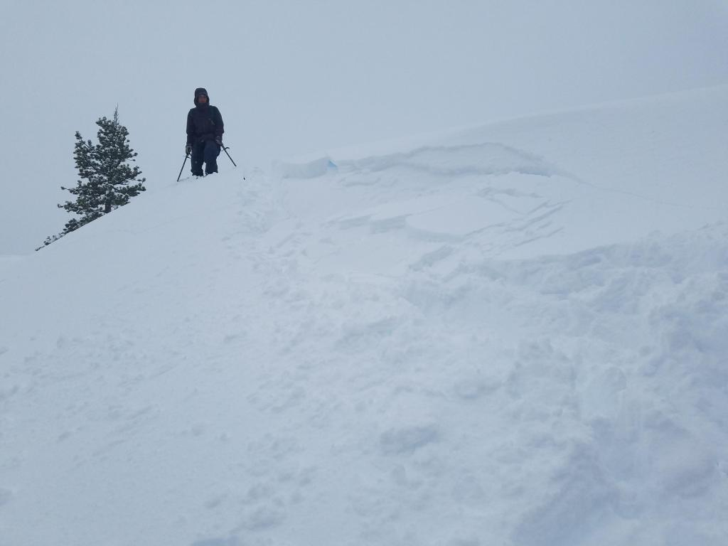 """Small 6-8&quot; deep <a href=""""https://www.sierraavalanchecenter.org/avalanche-terms/wind-slab"""" title=""""A cohesive layer of snow formed when wind deposits snow onto leeward terrain. Wind slabs are often smooth and rounded and sometimes sound hollow."""" class=""""lexicon-term"""">wind slab</a> failed on test slope, NE <a href=""""https://www.sierraavalanchecenter.org/avalanche-terms/aspect"""" title=""""The compass direction a slope faces (i.e. North, South, East, or West.)"""" class=""""lexicon-term"""">aspect</a> at 7000&#039;."""